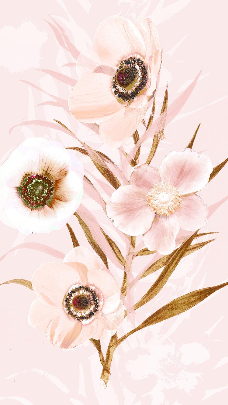 Pink Floral Phone Wallpaper
